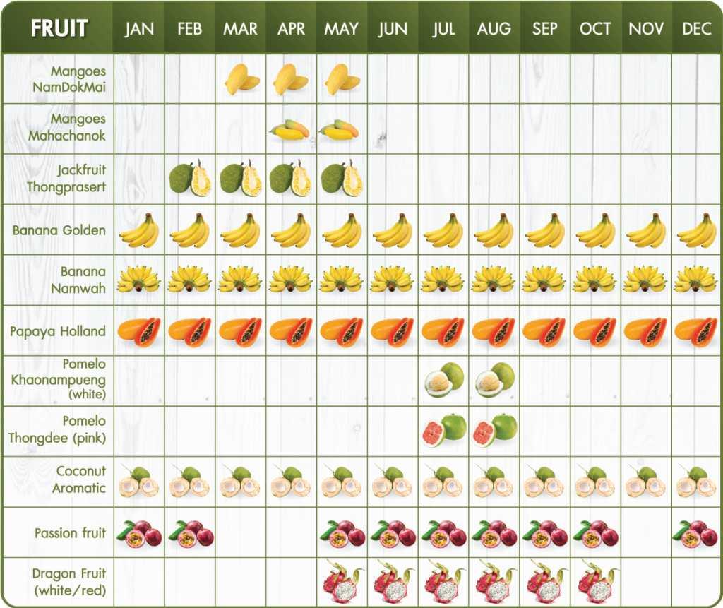 Thakolsri Farm - Fruit season