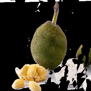 Jackfruit Frozen Fruit Thailand